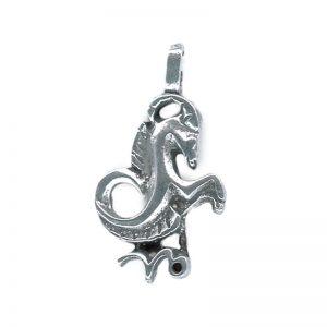 Zodiac Talisman Capricorne